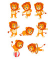 collection of cute lion character cartoon vector image