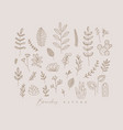 floral leaves set beige vector image vector image