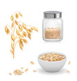 oats oat flakes in glass oatmeal and muesli vector image vector image
