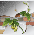 old brick wall with spider web vector image vector image