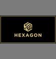 sm hexagon logo design inspiration vector image vector image