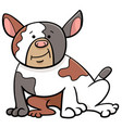 spotted bull dog cartoon animal character vector image vector image