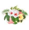 bouquet with tropical flowers floral arrangement vector image vector image