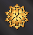 Flower golden mandala vector image