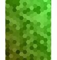 Green color hexagonal honey comb background vector image vector image