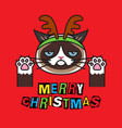 grumpy cat in costume christmas deer on red vector image vector image