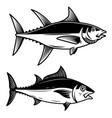 set of tuna fish on white background design vector image