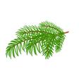 Spruce Christmas tree symbol celebration vector image vector image