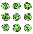 cabbage icons set flat vector image vector image