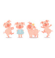 cartoon little piglets the year of the pig vector image