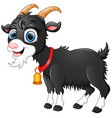 cute black goat cartoon vector image vector image