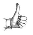 female hand make gesture thumb finger up vector image