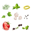 Set of vegetables on a white background dill vector image