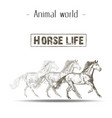 animal world horse life hand draw running horse ba vector image vector image