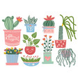 blooming plants in pots set indoor potted vector image vector image