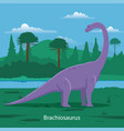 brachiosaurus prehistoric animal vector image