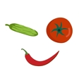Fresh vegetables smile face on white background vector image vector image