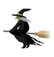 witch halloween cartoon character vector image vector image