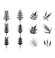 black wheat icons set vector image