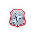 American Rodeo Cowboy Bull Riding Cartoon vector image vector image