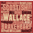 Braveheart DVD Review text background wordcloud vector image vector image
