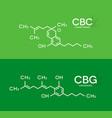 cbc and cbg formula cannabichromene vector image vector image