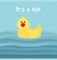 its a boy funny yellow duck bird toy baby shower vector image vector image
