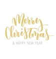 Merry Christmas hand written inscription vector image vector image