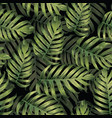 palm monstera seamless pattern vector image vector image