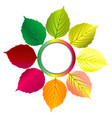 autumn background with round frame and leaves vector image