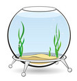 a round aquarium for fish vector image