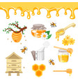 beekeeping and honey vector image vector image