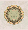 olive mandala pattern vector image