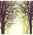 background with trees vector image vector image