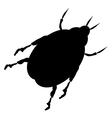 Beetle icon vector image vector image