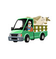 farmer cartoon driving truck transporting cow vector image