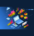 investment planner isometric icon vector image