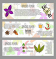 spices horizontal flyer design vector image