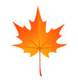 autumn maple leaf icon flat style vector image vector image