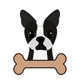 cute dog and bone vector image vector image