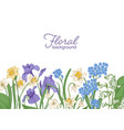 floral horizontal backdrop decorated with spring vector image