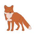 fox worth drawing color vector image