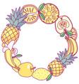 fruit circle clip art vector image