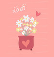 love sweet pink card flower in pot flat design vector image