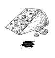 parmesan cheese drawing hand drawn foo vector image