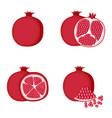 pomegranate whole fruit half slice vector image