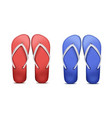 two pair of flip-flops vector image vector image