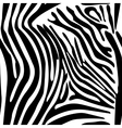 Zebra Stripes Seamless Pattern vector image vector image