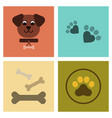 assembly flat icons traces of dog bones vector image