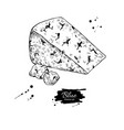 blue cheese triangle drawing hand drawn vector image vector image